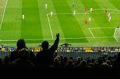 Soccer Fans In A Match