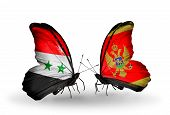 Two Butterflies With Flags On Wings As Symbol Of Relations Syria And Montenegro