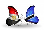 Two Butterflies With Flags On Wings As Symbol Of Relations Egypt And Botswana