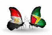 Two Butterflies With Flags On Wings As Symbol Of Relations Egypt And Guyana