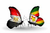 Two Butterflies With Flags On Wings As Symbol Of Relations Egypt And Zimbabwe