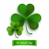 Saint Patricks Day Vector Greeting Card, Realistic Shamrock Leaves Isolated On White