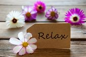 Label With Text Relax With Cosmea Blossoms
