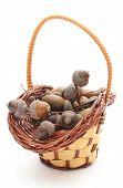 stock photo of acorn  - Stack of brown acorns in wicker basket on white background - JPG