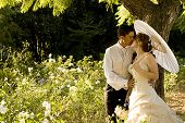 just married couple standing and kissing in white flower bed under a tree