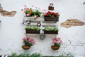 stock photo of wooden pallet  - White storage industrial pallet used in gardening for a wall decoration as a shelf for flowerpots and other objects - JPG