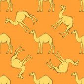picture of hump day  - Sketch cute camel in vintage style vector seamless pattern - JPG