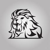 picture of lions-head  - Isolated lion head as a symbol or sign - JPG