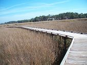 Tybee Island Foot Bridge