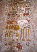 Hieroglyphs And Symbols
