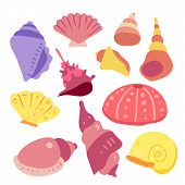 Shell Vector Collection Design, Shell Vector Set, Shell Collection Design poster