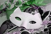 Cat White Eyemask With Lace And Beads And Green Floral Decoration, Glamour Seductive Expression. poster