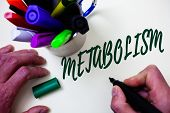 Word Writing Text Metabolism. Business Concept For Chemical Processes In Body To Produce Energy Food poster