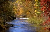 Scenic riverscape