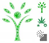 Eco Man Collage Of Weed Leaves In Variable Sizes And Color Hues. Vector Flat Weed Items Are Composed poster