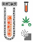 Test-tube Collage Of Marijuana Leaves In Different Sizes And Color Tints. Vector Flat Weed Symbols A poster