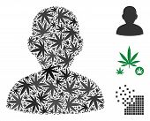 User Collage Of Hemp Leaves In Variable Sizes And Color Tinges. Vector Flat Hemp Objects Are Combine poster