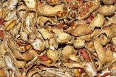 Smashed Peanut Shells