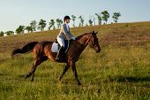 Young Woman Rider With Her Horse In Evening Sunset Light. Outdoor Photography In Lifestyle Mood. Equ poster