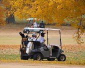 Queda de golfe 101
