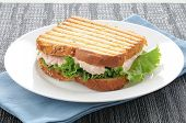 Grilled Tuna Sandwich