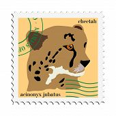 stamp with image of cheetah