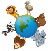 illustrtion of various animals on earth on white background