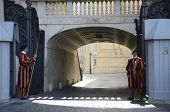 Swiss Guard on Duty Vatican City