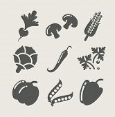 vegetables set of icons vector illustration