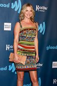 LOS ANGELES - APR 20:  Ali Larter arrives at the 2013 GLAAD Media Awards at the JW Marriott on April