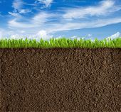 stock photo of rich soil  - Soil - JPG