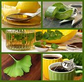 Collage of alternative healing remedies (includes honey with lemon, aloe vera, lemon balm plant, her
