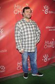 LOS ANGELES - APR 25:  Jack Black arrives at the Second Annual Hilarity For Charity benefiting The A
