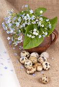 quail eggs and forget-me-not flowers