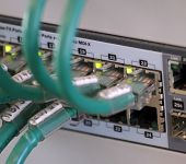 Network Cables In A Patch Panel For The Connection Of The Computer With The Central Server