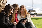 foto of wench  - Young female students consulted on a tablet - JPG
