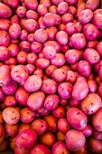 pic of solanum tuberosum  - Fresh produce at the Farmers Market in early Summer - JPG