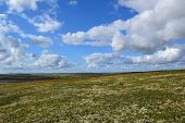 picture of murmansk  - Tundra and sky in Barents sea Murmansk region - JPG