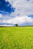 Scenic View Plain Nature