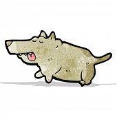 cartoon fat little dog
