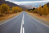 Road Among The Altai Mountains. Autumn