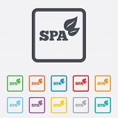 Spa sign icon. Spa leaves symbol.