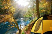 Beautiful morning in the misty autumn forest with sun rays .yellow tent, travel in the autumn forest