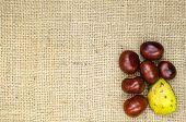 Horse Chestnuts Still Life Decor