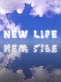 Постер, плакат: New Life