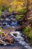 A Colorful Autumn Morning in Enchanting Sedona Arizona