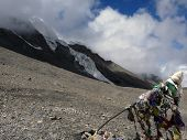 Glacier Near Prayer Flag In Himalayas