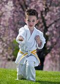 image of jiujitsu  - Young boy practicing martial arts outside in spring - JPG