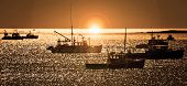 pic of lobster boat  - Lobster fishing vessels at sunset in Maine - JPG