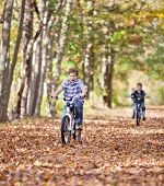 picture of bike path  - Young boy with bike on path during the autumn - JPG
